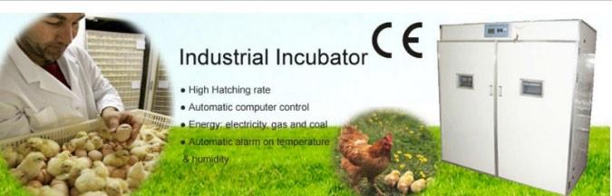 mesin-tetas-telur-industri-264-butir-industrial-incubator