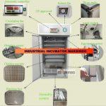 Jual Mesin Tetas Telur Industri 528 Butir (Industrial Incubator) di Surabaya